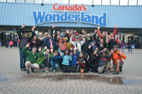 ICD goes to Wonderland!